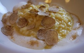 White truffle risotto 280x178 Truffle: The mysterious fungus